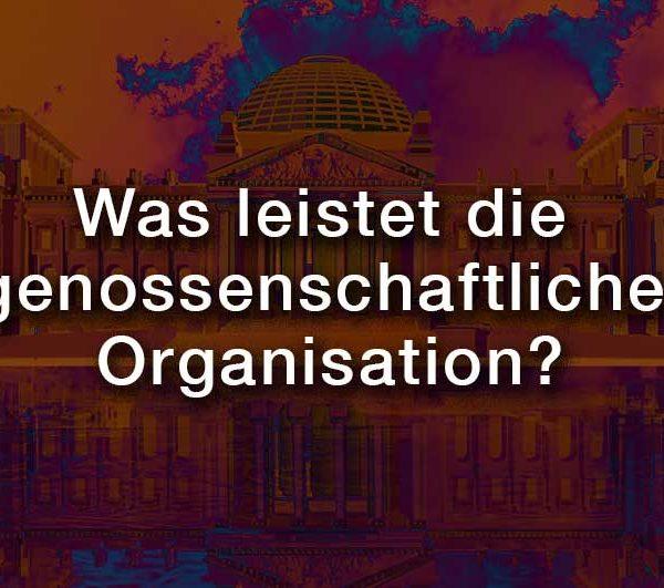 Was-leistet-die-genossenschaftliche-Organisation-